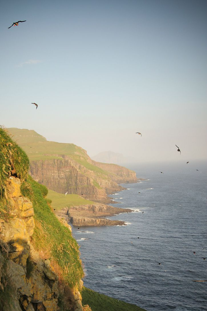Cliffs on Mykines, Faroe Islands I @ Kate Cornfield I Destination Unknown